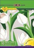 Картон белый двухсторонний А4, 10 листов