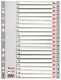 Индекс-разделитель Esselte, А4, 20 разделов, РР, серый