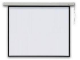Проекционный экран PROFI electric 240x240 см