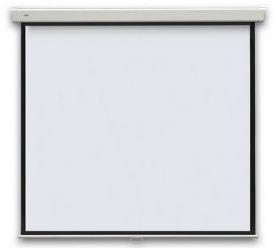 Проекционный экран PROFI manual 240x240 см