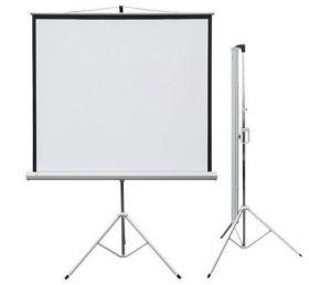 Проекционный экран PROFI tripod mobile 150x150 см