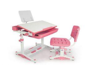 Комплект парта и стульчик Evo-kids BD-04 P New