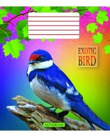Тетрадь Мечты сбываются Экзотические птицы А5, 18 листов, клетка