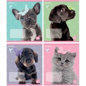 Тетрадь КІТЕ Studio Pets А5,18 листов,клетка