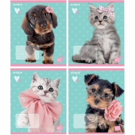 Тетрадь КІТЕ Studio Pets А5,12 листов,косая линия