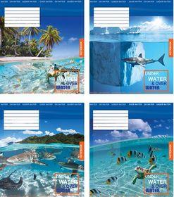 Тетрадь Мечты сбываются Дельфины А5, 18 листов, клетка, ассорти