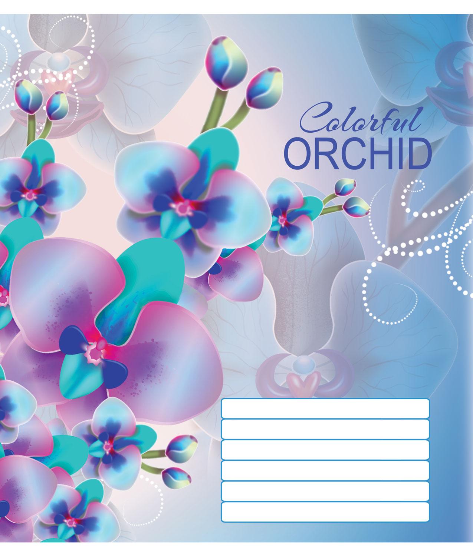 Тетрадь Мечты сбываются Орхидеи А5, 24 листа, линия