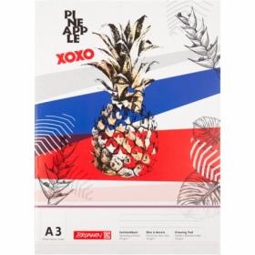 Альбом для рисования Brunnen Pineapple А3, 20 листов