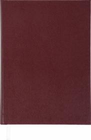 Ежедневник недатированныйSTRONG,коричневый