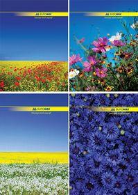 Книга канцелярская Buromax NATURE А4, 96 листов, клетка, ассорти