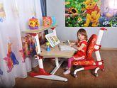Детский стол Mealux BD-205 WR клен + полка BD-PK5